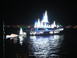 Sights and Sounds at the Newport Christmas Boat Parade