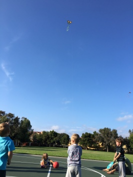 Amos got to fly a kite again at a friend's birthday gathering!
