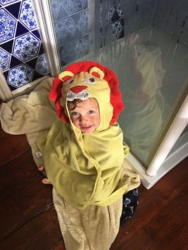 A fresh and clean baby Lukey-lion
