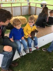 Bunnies at the Garden festival