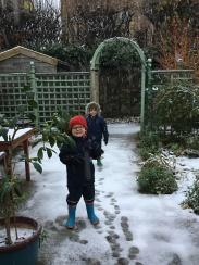 Snow in Cambridge!