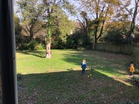 A huge yard!