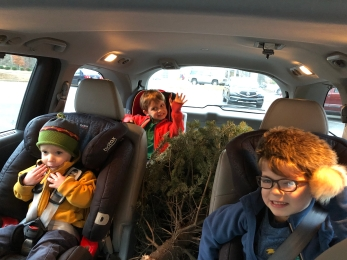We even put a tree into it.